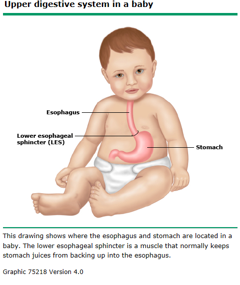 Acid Reflux In Babies Family Care Clinic